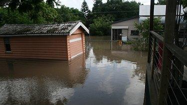 The flooded backyard.