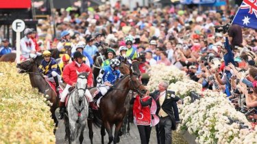 Araldo (left) ridden by Dwayne Dunn is spooked by a patron waving a flag as the horses return to scale after racing in the Melbourne Cup.