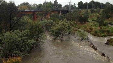 Flash flooding Merri Creek.