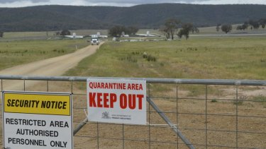 The free range poultry farm near Young where hundreds of thousands of chooks have been destroyed.