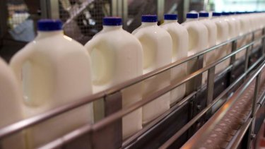 Woolworths are set to buy their milk directly from dairy farmers.