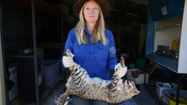 Dr Katherine Moseby at the research station with a feral cat that has been caught on the station's land.