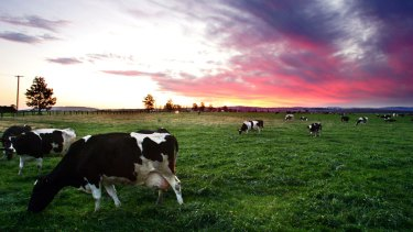 Under the deal 98 per cent of all tariffs will be eliminated across everything from beef, dairy, wine, sugar, rice, horticulture and seafood through to manufactured goods, resources and energy.