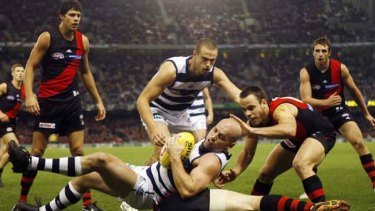 Paul Chapman takes a strong mark during the Cats' 71-point thrashing of Essendon last night at Etihad Stadium.