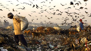 Plastic bags are blamed for Delhi's rising tide of rubbish.