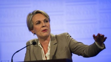 Tanya Plibersek says Ebola is 'the most serious health emergency of the modern era'.