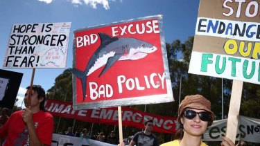 Scenes from the March in March rally at Parliament House.