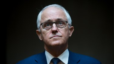 Poised to reject NZ's offer: Australian Prime Minister Malcolm Turnbull.