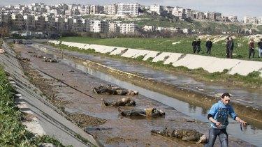 Horrific discovery ... 68 bodies were found in Aleppo.