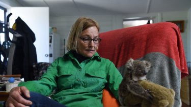 Alaine Anderson feeds a rescued koala.