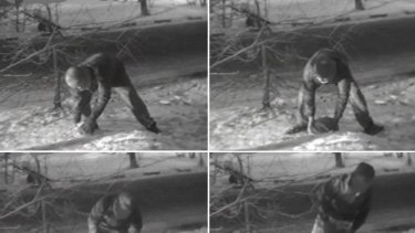 These images from Russian state television purportedly show a member of the British embassy in Moscow removing the 'spy rock' from a park on the outskirts of the Russian capital.