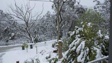 That was then: snow on Bettington Road, Blackheath on October 12 last year.