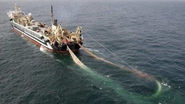 Conflict ... the Margiris super trawler.