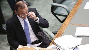 Oppostion Leader Tony Abbott during House of Representatives question time on Thursday.