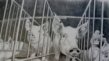 Factory Farming: Industrialised Cruelty, by Jo Frederiks.