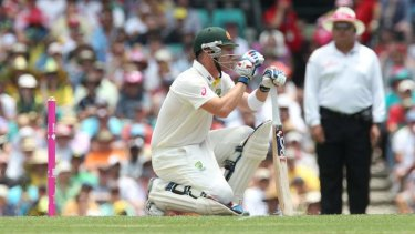'I asked him (Haddin) about it in Melbourne, and he's not going anywhere' said Ian Healy.