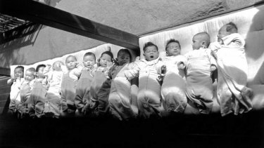 Baby boom ... mixed-race orphans taken into care were not as numerous as they were made to appear.