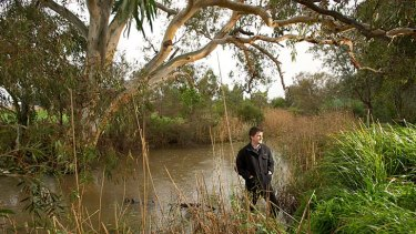 Dr Geoff Heard surveys a site at Merri Creek in Donnybrook, which is home to the frog.