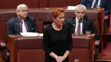 Senator Pauline Hanson wore a burqa during question time at Parliament House.
