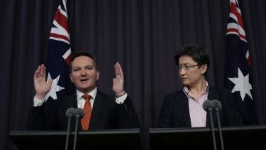 Treasurer Chris Bowen and Finance Minister Senator Penny Wong outline the government's mini-budget.
