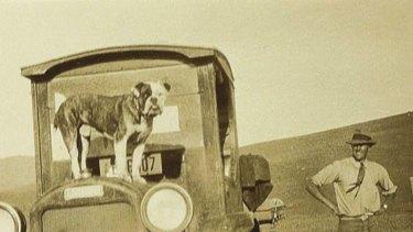 Happy Valley ... Patrick White with his bulldog, Soames, on Bolaro Station.