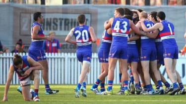 Good as it gets: The Bulldogs beat Port Melbourne in the VFL Grand Final.