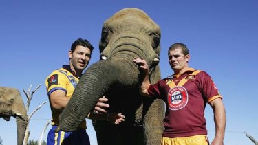 African elephant Yum Yum with City captain Craig Gower and Country captain Andrew Ryan at Western Plains Zoo in 2006.