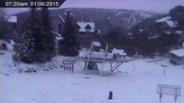 A snow cam image from Eagle Chair, Falls Creek, at 7.20am on June 1.