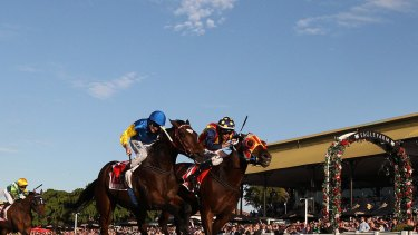 Black Heart Bart is a real chance in Sunday's Underwood at Caulfield.