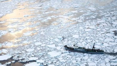 Whaling as they see fit ... Japanese whaling ship, the Yushin Maru No. 1, cuts through ice in the southern Atlantic Ocean.
