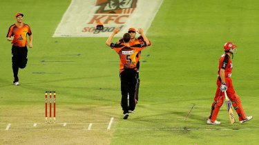 Jason Behrendorff and Tom Triffitt of the Scorchers celebrate the wicket of Ben Rohrer of the Renegades.
