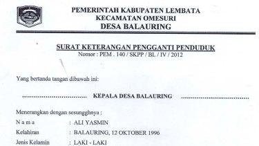 Documents verifying the 1996 birthdate of Ali Jasmin.