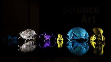 Titanium 3D bugs.