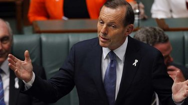 Tony Abbott and his cabinet are struggling to find a core vision for Australia.