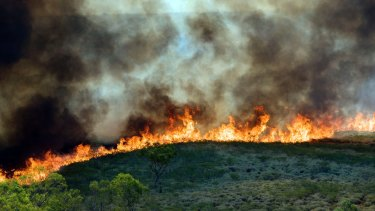 Wildfire: critics argue that too much is being burnt too often in the Northern Territory.