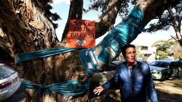 Sydney lord mayor Clover Moore with one of the trees due for removal in Sydney Park.