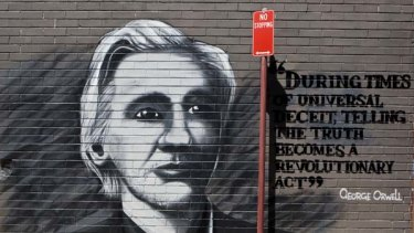 Immortalised ... an image of Julian Assange has appeared in a Stanmore laneway.