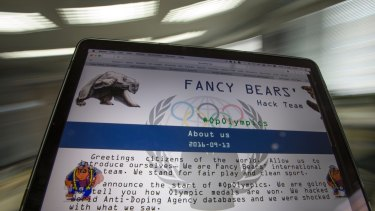 A screenshot of the Fancy Bears website fancybear.net seen on a computer screen in Moscow, Russia. The group interfered in the US election.