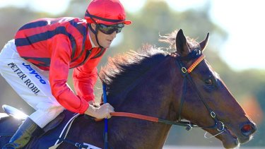 Talented three-year-old colt Your Song could be the one to again give Gooree that winning feeling at the highest level.