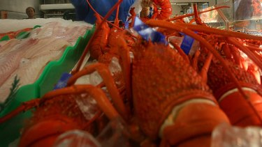 Crayfish might be a prized delicacy but two Fisheries Department surveillance operations have resulted in more than $100,000 of fines and court costs for WA fishers found to be obtaining seafood by illegal means.