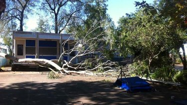 The large branch fell down in the playground.