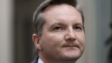 Acting Labor leader Chris Bowen said Kevin Rudd did not undermine his replacement Julia Gillard.