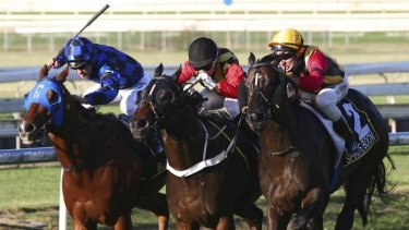Tight finish: Spirit Of Boom (right) edges out his stablemate Temple Of Boom (centre) and Buffering (left) to win the Doomben 10,000 on Saturday.