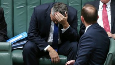 The popularity of Treasurer Joe Hockey, pictured during question time last month, has plummeted since the government's first budget in May.