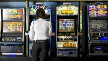 Female international students display higher rates of problem gambling than local students, according to a recent study.