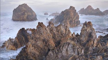 The most beautiful and intact regions of natural heritage in modern Australia ... the Tarkine coast.