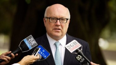 """I am in the process at the moment of going through those many submissions ... [they] reflect a variety of views across the Australian community on what is an important and difficult issue"": Senator George Brandis."
