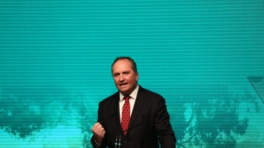 Deputy Prime Minister Barnaby Joyce speaks at the national Liberal party campaign rally in Sydney.