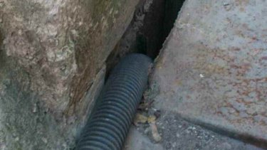 Pipe leading into stormwater drain.