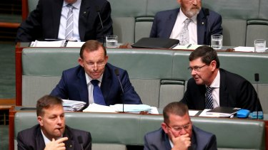 Tony Abbott and Kevin Andrews during question time on Wednesday.